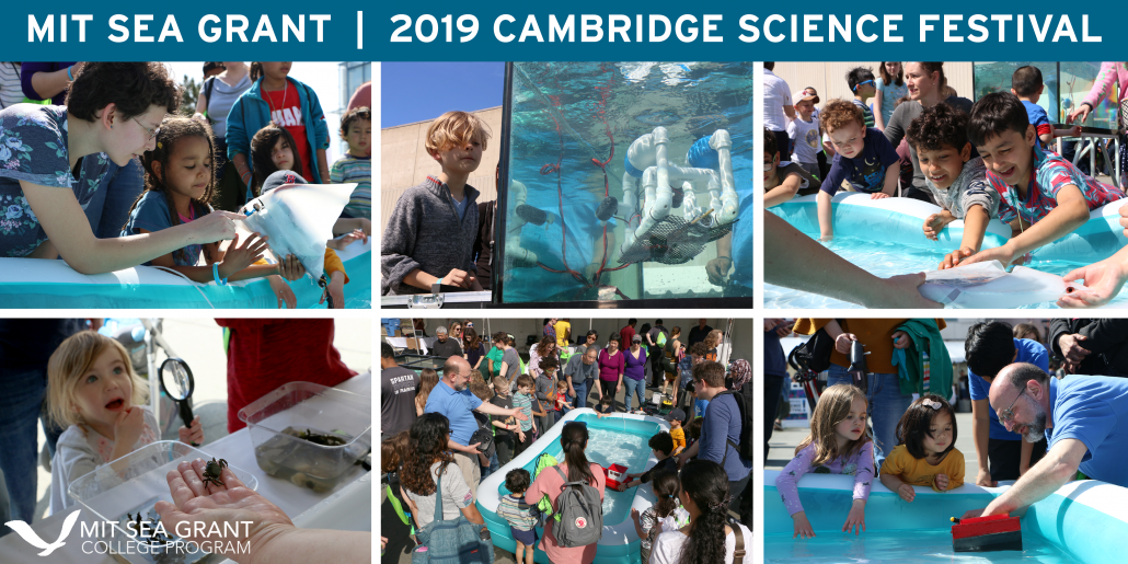 A collage of nine photos from the Cambridge Science Festival, including the SeaPerch tank, live touch tanks, and robot zoo pool.