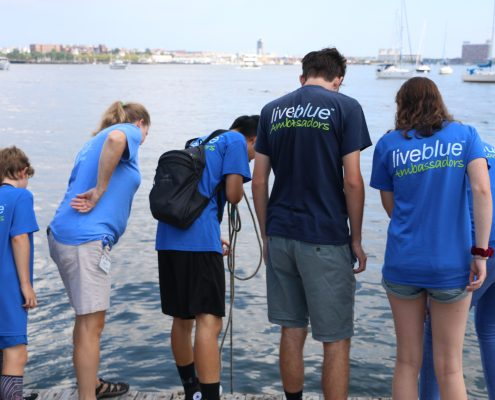A group of citizen scientists perform bucket sampling on a dock in Boston Harbor.