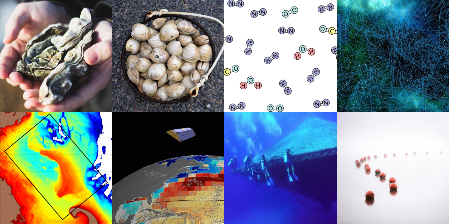 A collage of eight images, including oysters and buoys, to visualize topics of funded research.