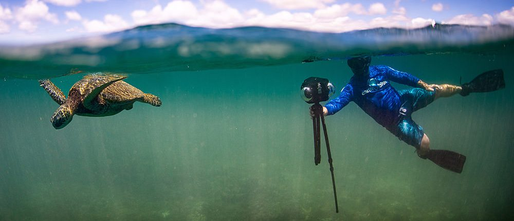 A freediver holds a 360 degree camera to film a sea turtle underwater.