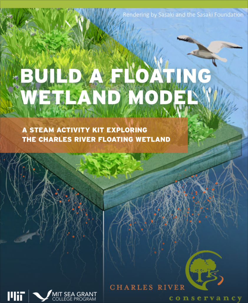 STEAM Saturday Build a Floating Wetland Model booklet cover