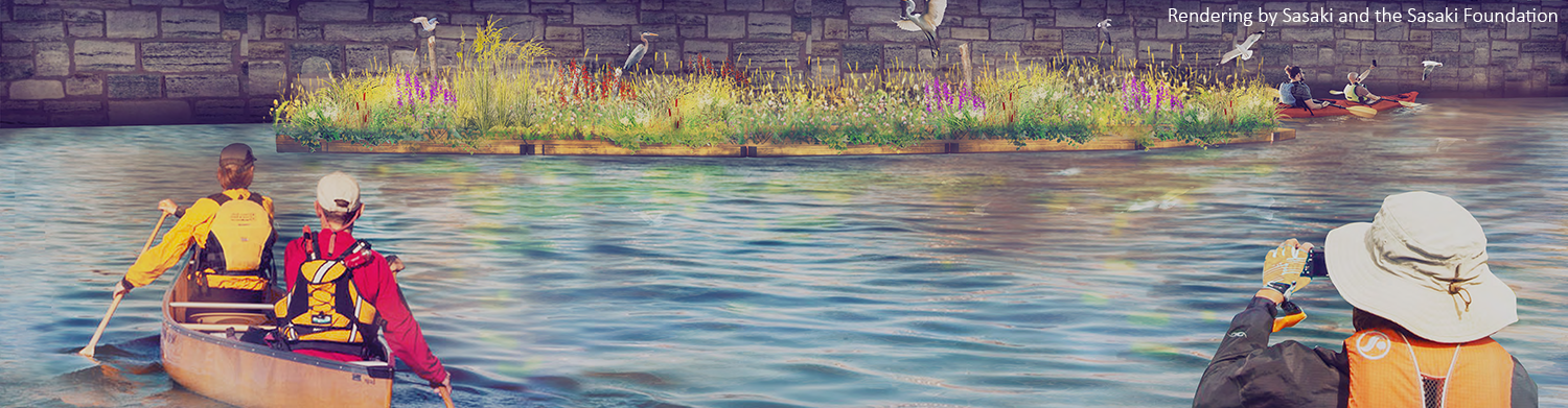 A rendering of the Charles River Floating Wetland depicting kayakers and birds by the wetland.