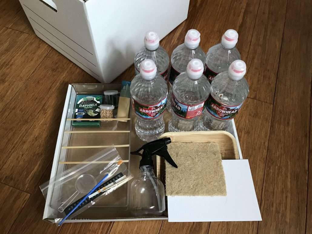 Kit materials, including spring water, daphnia eggs, a tray, seeds, art supplies, grow mat, plate, and spray bottle.